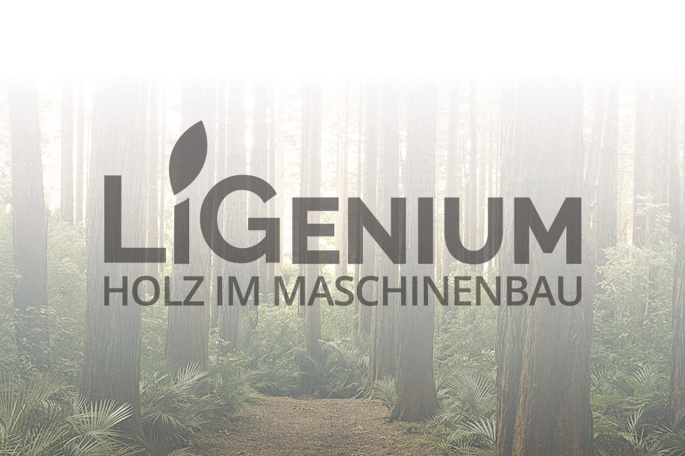 ligenium-banner-news
